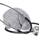 alc acetyl l carnitine for brain health
