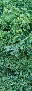 Kale anti inflammatory foods