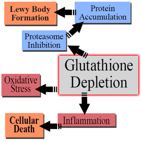 Glutathione-and-Parkinson's-Disease