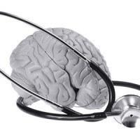 alc acetyl l carnitine for brain health