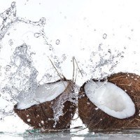beginners-guide-to-coconut-water-benefits
